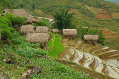 Tarasy ryzowe wokol Sapy Wietnam (9)