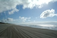 Fraser Island (5)