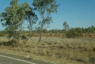 Trasa Capmervanem z Darwin do Brisbane_Australia (10)