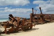 Wrak na Fraser Island (4)