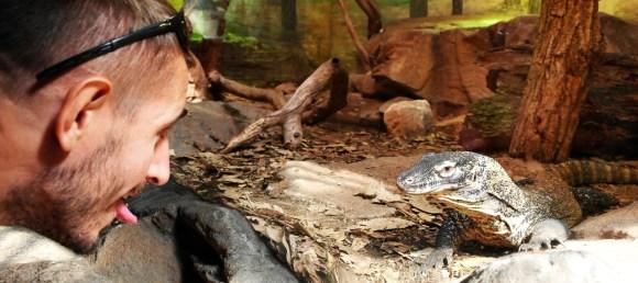 Zoo Sydney (9)