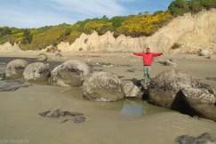 Wybrzeze Otago Moeraki Boulders (11)