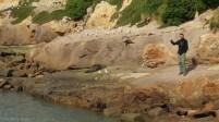 Wybrzeze Otago Moeraki Boulders (7)