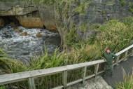 Zachodnie wybrzeże Nowej Zelandii (9)