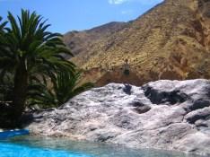Oaza w Kanionie Colca (12)