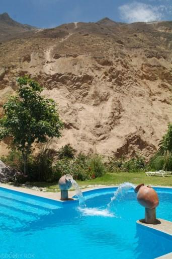 Oaza w kanionie colca_ (2)