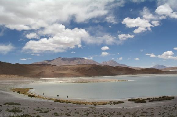 Laguna na pustyni w Boliwii (9)