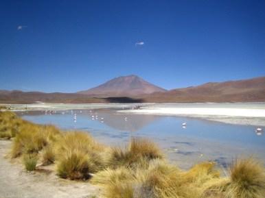 Laguna na pustyni w Boliwii