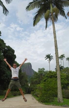 Ogrody botaniczne Rio de Janeiro (8)