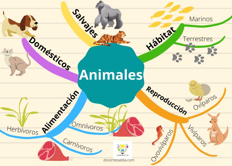 Mapa mental sobre animales ejemplos