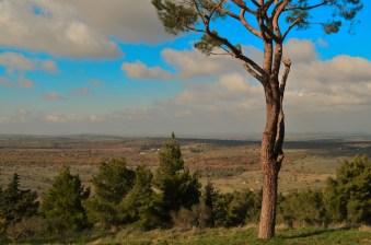 Veduta da Castel del Monte