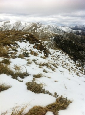 The view from the tops above Rangiwahia Hut.