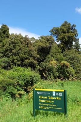 Entering the Haast tokoeka kiwi sanctuary near the Waiatoto River. Photographer: Sarah Nason.