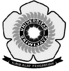 Perkawinan Endogami Pada Masyarakat Keturunan Arab Studi Di Kampung Arab Al Munawar Kelurahan 13 Ulu Kecamatan Seberang Ulu Ii Kota Palembang Pdf Free Download
