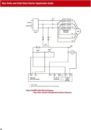 WYEDELTA AND SOLID STATE STARTER APPLICATION GUIDE  PDF