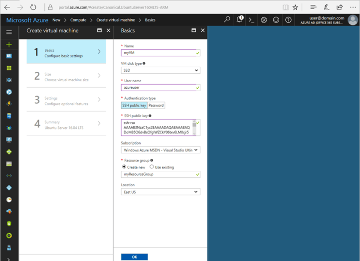 Enter basic information about your VM in the portal blade