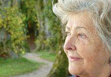 LA FDA dio luz verde al primer medicamento contra el Alzheimer en 20 años (Foto: Pixabay)