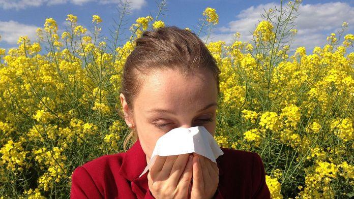 Crecen las alergias. (Foto: Pixabay)