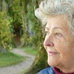 Claves para ralentizar el Alzheimer (foto: Pixabay)