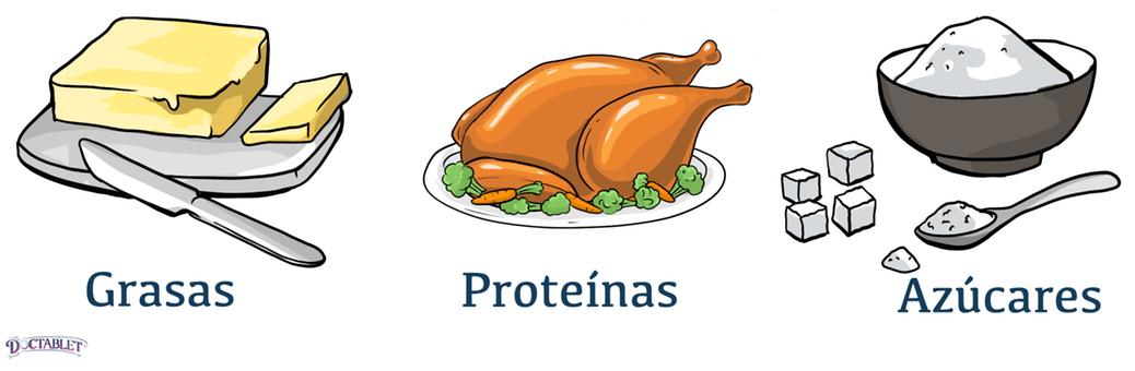 Hay tres ingredientes principales en los alimentos que proporcionan energía - grasas, carbohidratos y proteínas.