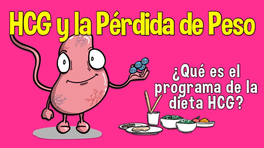 HCG y la Pérdida de Peso: Qué es el programa de dieta HCG - Doctablet®