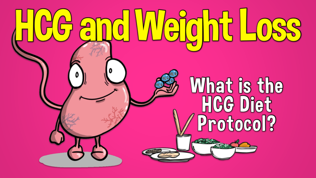 HCG and Weight Loss: What is the HCG Diet Protocol - Doctablet®