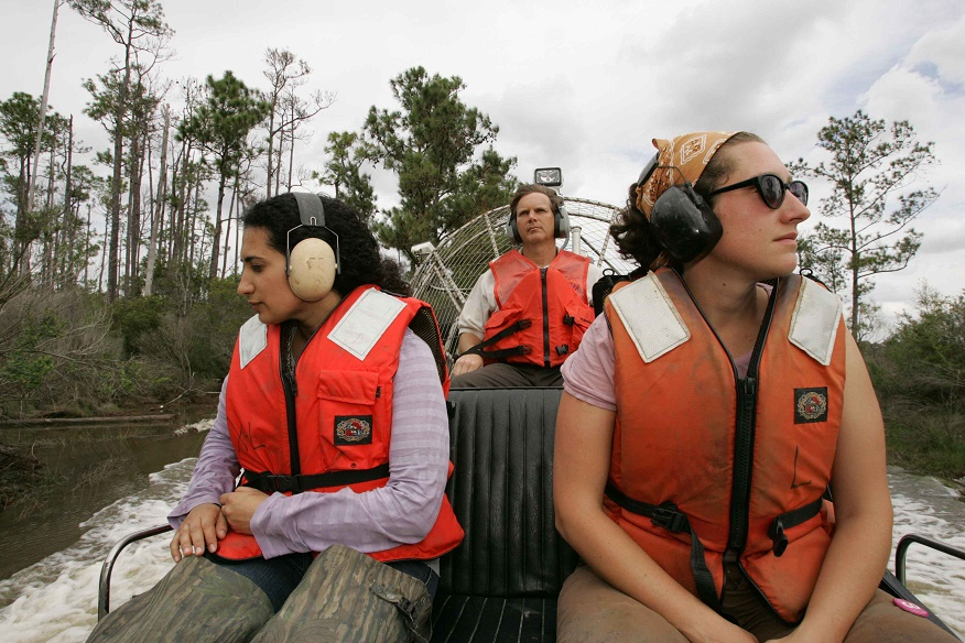 peltor tactical 6s earmuffs protection