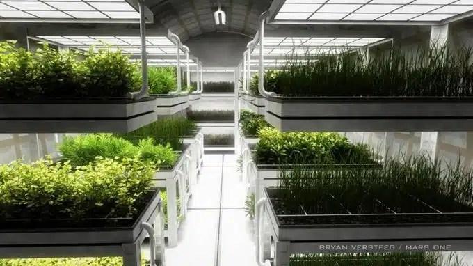 nasa cultiver des salades dans l'espace