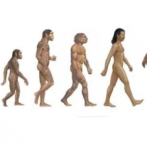 cancer maladie moderne evolution de l'homme