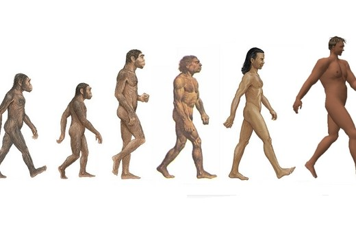 cancer maladie moderne evolution de l'homme