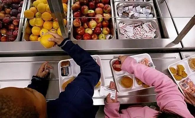 Alimentation des enfants en cantine