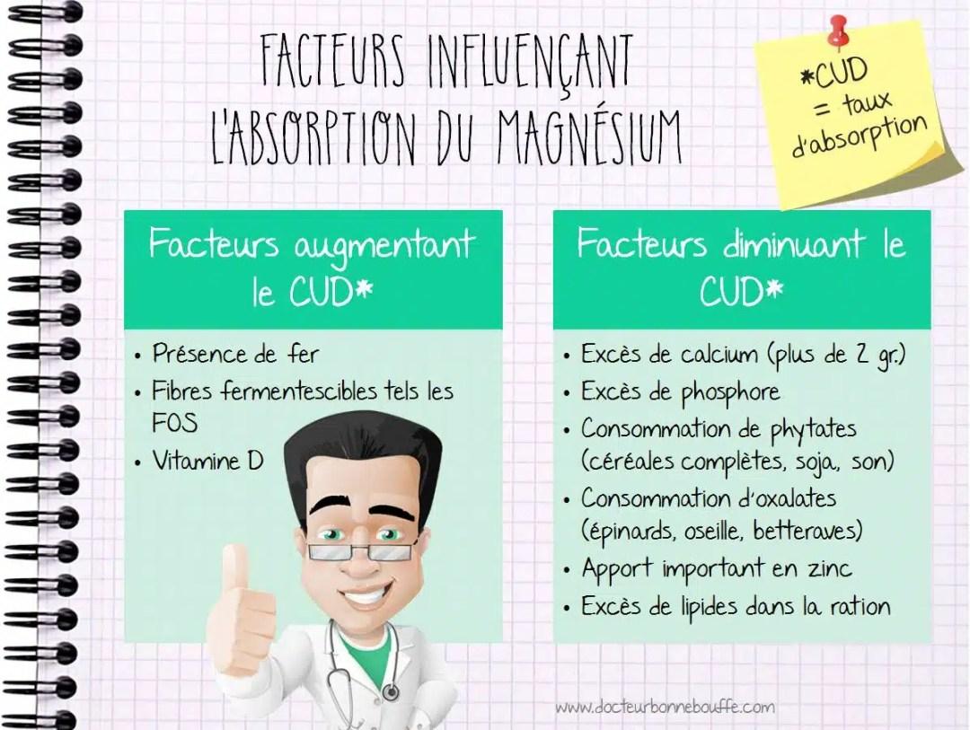Facteurs d'absorption du magnésium