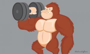 Alimentation du sportif : les erreurs à ne pas commettre
