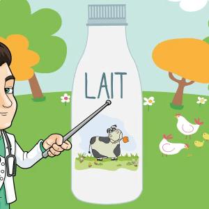 laits sans lactose intolerance au lactose