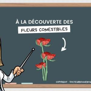 fleurs comestibles liste
