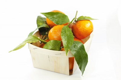 mandarines clémentines