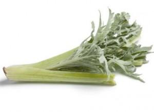 légume : cardon
