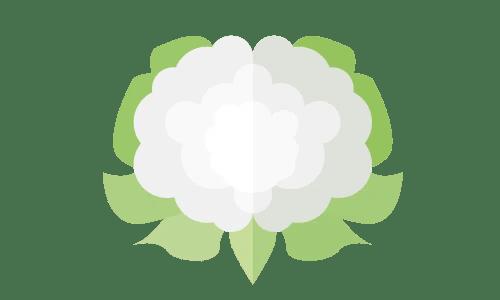 chou-fleur saison