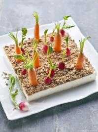 mini potager de légumes à manger