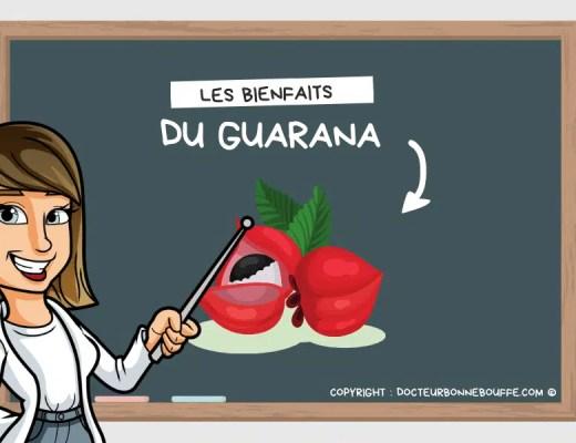 guarana bienfaits santé