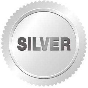Consulenza SEO prezzi silver