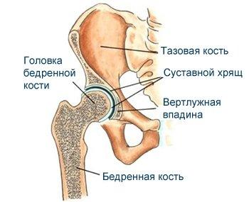 Poate îmbina dureri din apă - Bile medicale pentru artrita genunchiului