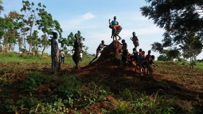 termite hill two
