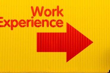 Virtual Work Expereince