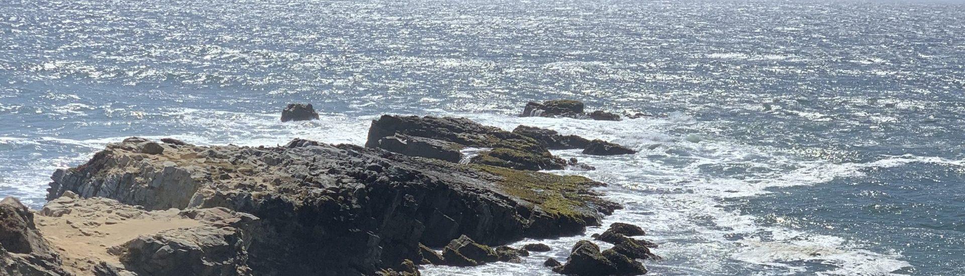 LostOrFound Ocean