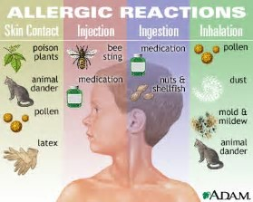 allergy elimination