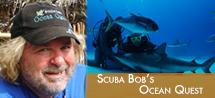 Scuba Bob's Ocean Quest webgraphic