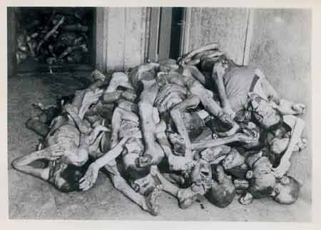 Photo from Dachau Concentration Camp from the Jewish Virtual Library http://www.jewishvirtuallibrary.org/jsource/Holocaust/dachaumartins.html