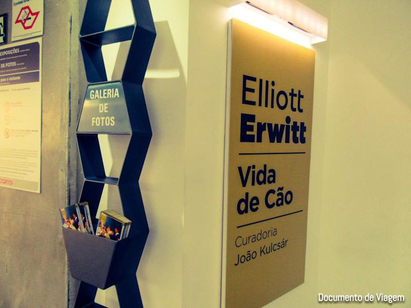 Vida de Cão - Elliott Erwitt