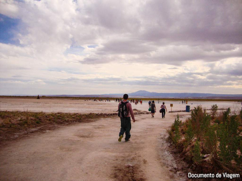 Laguna Cejar Atacama
